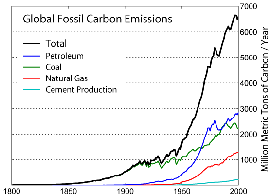 Annual Carbon Emissions